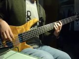 Incubus - New Skin Bass Guitar Cover