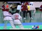 Coupe technique du Cénacle 2010
