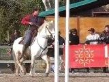 Parcours de maniabilité équitation Camargue à CAMAGRI 2010