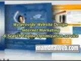 Professional - Web Designers | Website Designer