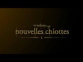 The Toilette Saga - Nouvelles Chiottes