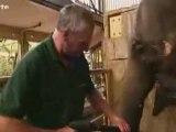 bebes du zoo premieres frayeurs 1