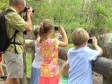 Photo Safari - DadLabs.com
