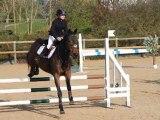 11/04/2010 Concours de saut Dompierre la maison du poney