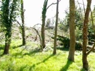 Dossier Video la Gâtine : OVNI & Hantise 001