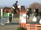 Ségal cso jeunes chevaux CL 4 ans à quimper