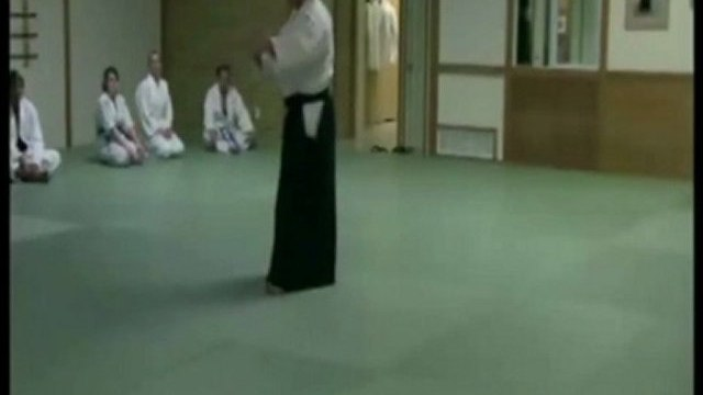 Martial Art of Aikido-Concepts Explained 2