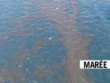 Le Journal vidéo du jeudi 29 avril 2010, édition de 12H00