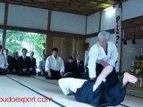 Aikido - Doshu Moriteru Ueshiba - Aikijinja Taisai 2010
