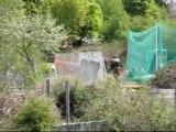 25/04/2010 - Tournoi des fougères - Pirey