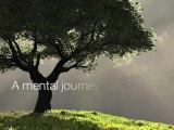 Silva Mind Control Discover Silva Mind Control Method - Unl