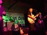Awek au Festival Blues de Belle Isle en Terre