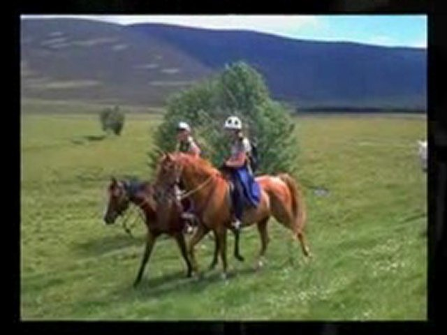 Riding Chaps – Comfortable Horse Riding