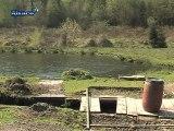 Protection des bassins piscicoles en Alsace