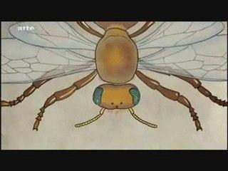 Disparition des abeilles = Danger pour l'homme 1/5