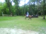 CROSS EQUITATION
