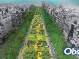 Les Champs Elysées en vert