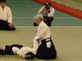 48th All Japan Aikido - Ueshiba Moriteru Doshu