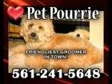 Pet Pourrie, Grooming salon, Dog grooming, Pet grooming, Pa