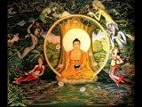 techno goa trance  psytrance  psy xtc goatrance lost buddha