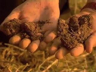 Claude Lydia BOURGUIGNON, mort des sols = mort des hommes !