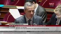 SEANCE,Séance - Suite du projet de loi de modernisation de l'agriculture et de la pêche