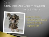 Best San Diego Dog Grooming