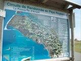 La palmyre Charente-Maritime (17)