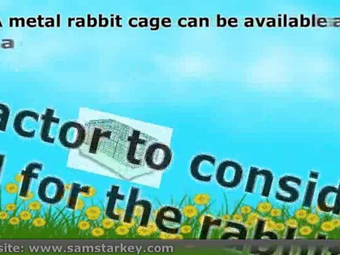 3 factors to consider when buying rabbit cages