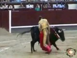 Corrida : Juan Bautista triomphe dans les arènes de Madrid