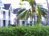 Hotel Blue Lagon - Reunion
