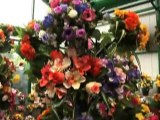Vente et production de fleurs et plantes à Tournai (Hainaut)