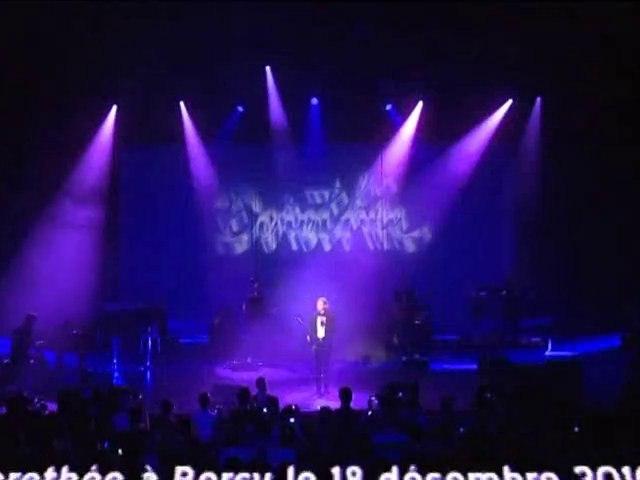 Dorothée à Bercy le 18 décembre 2010 !