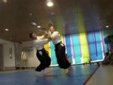 Demonstration  d'Aikido du 19/06/2010