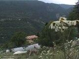 Fermes ouvertes bio 2010 : la ferme Lavancia à Puget Thenier