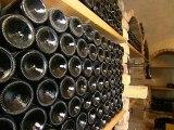 Weingut & Heuriger Piribauer -  Eine Erfolgsgeschichte eines