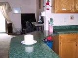 Homes for Sale - 943 Mary Ln - Braidwood, IL 60408 - Coldwel