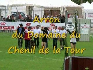 Arron du Domaine du Chenil de la Tour, Finale Ring 2010
