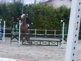 CSO neuilly sur marne 04.04.10