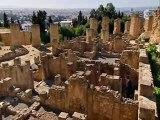 Des racines et des ailes - Spécial Tunisie part 1