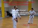 Uechi-ryu Karate-do Kenyukaï 50ème Anniversaire - 27/06/2010
