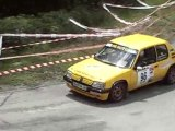 Rallye Viganais 2010