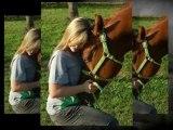 Horseback Riding Lessons in Katy TX