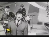 The Animals Don't Let Me Be Misunderstood 1965
