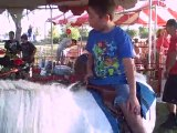 Freckle Farm Pony Rides   Petting Zoo   Parties Fairs