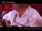 The Goldies - It's a wild world