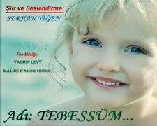 SERHAN YIGEN ADI Tebessum