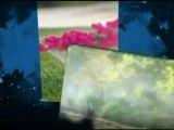 Sprinkler Systems Dallas - Dependable Sprinkler Repair
