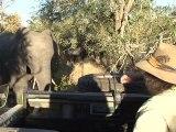 safari.tv diary - 3 June 2010