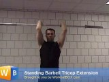 tricep extension barbell